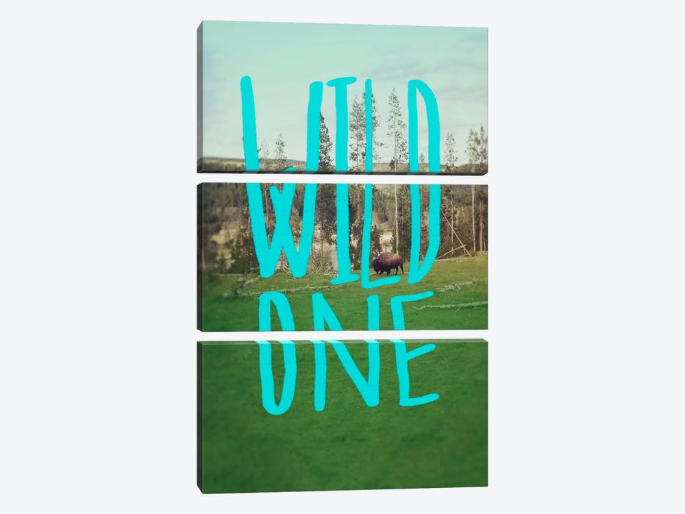 Wild One Art by Leah Flores 3-piece Canvas Wall Art
