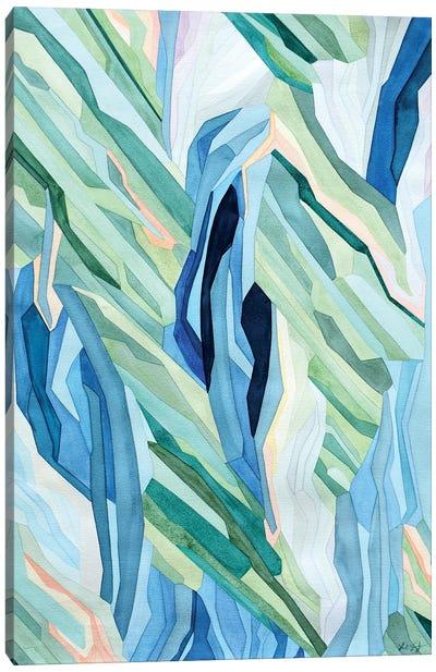 Su Tierra Canvas Art Print