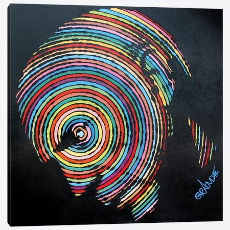 Picassos Summer Stripes Canvas Print #LGA167} by Alla GrAnde Art Print