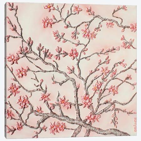 Almond Tree Canvas Print #LGA237} by Alla GrAnde Canvas Print