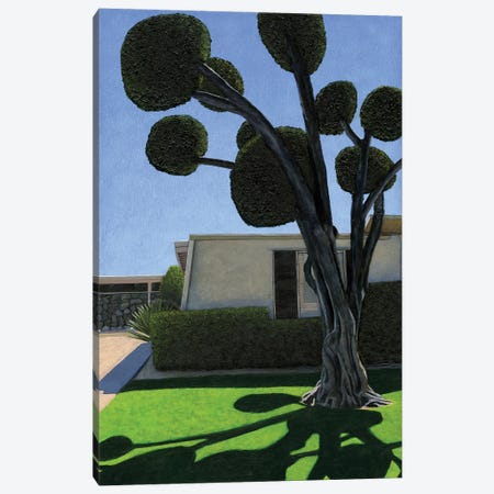 Palm Springs Poodle Cut Canvas Print #LGI38} by Leah Giberson Canvas Print