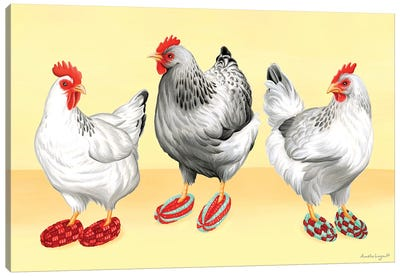 Hens Slippers Canvas Art Print