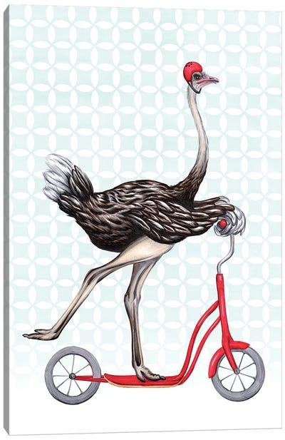 Ostrich On Bike Canvas Art Print