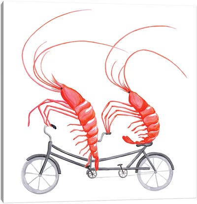 Shrimps On Bike Canvas Art Print