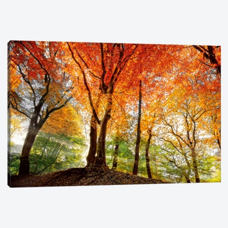 Prism Of Light Canvas Print #LGR10} by Lars van de Goor Canvas Art