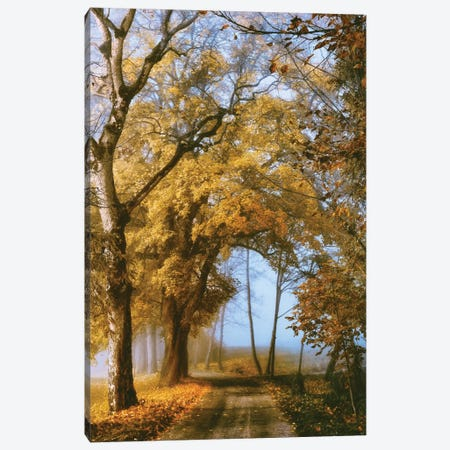 The Road To You Canvas Print #LGR11} by Lars van de Goor Canvas Wall Art
