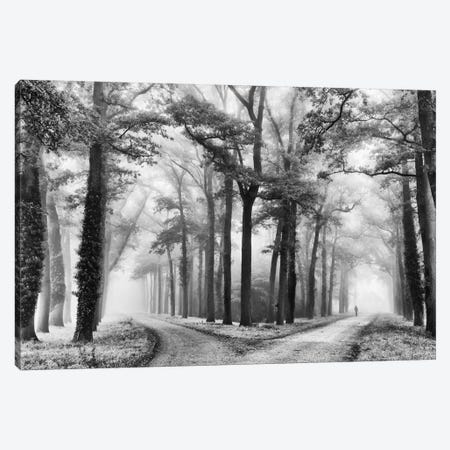 Turning Left Wasn't Right Canvas Print #LGR12} by Lars van de Goor Canvas Artwork