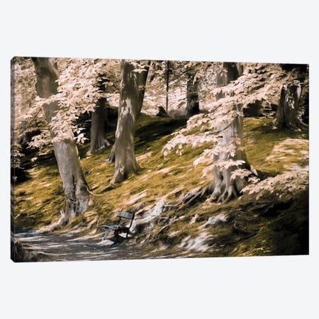 A Fine Place To Rest Canvas Print #LGR13} by Lars van de Goor Canvas Artwork