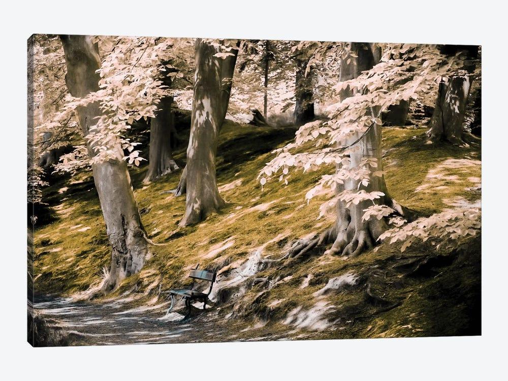 A Fine Place To Rest by Lars van de Goor 1-piece Canvas Artwork
