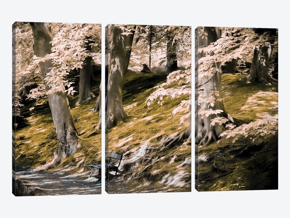 A Fine Place To Rest by Lars van de Goor 3-piece Canvas Artwork