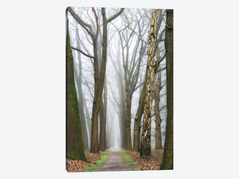 At The End You Will Find A New Beginning by Lars van de Goor 1-piece Canvas Print