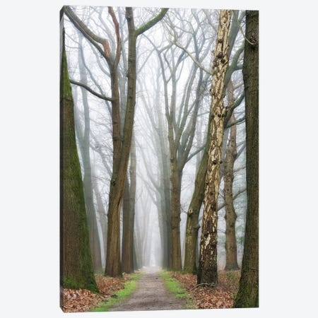 At The End You Will Find A New Beginning Canvas Print #LGR14} by Lars van de Goor Canvas Print