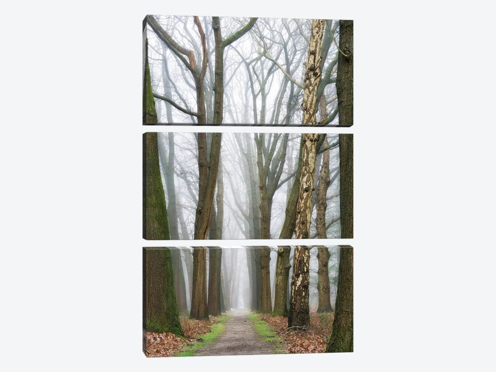 At The End You Will Find A New Beginning by Lars van de Goor 3-piece Art Print