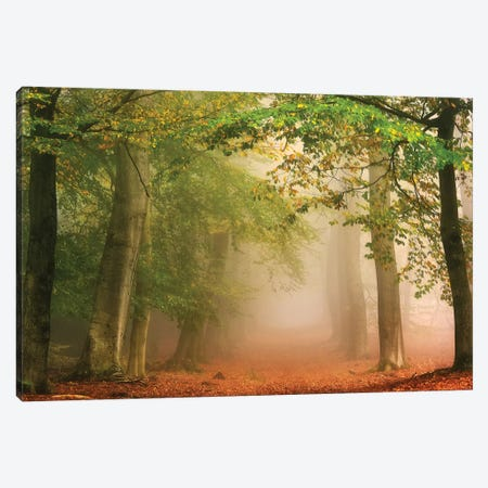Dreambridge Canvas Print #LGR16} by Lars van de Goor Canvas Art Print