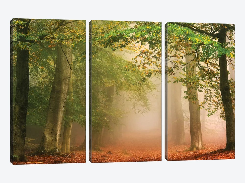 Dreambridge by Lars van de Goor 3-piece Canvas Print