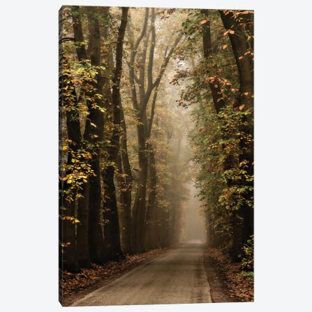 Folia Canvas Print #LGR17} by Lars van de Goor Canvas Art Print
