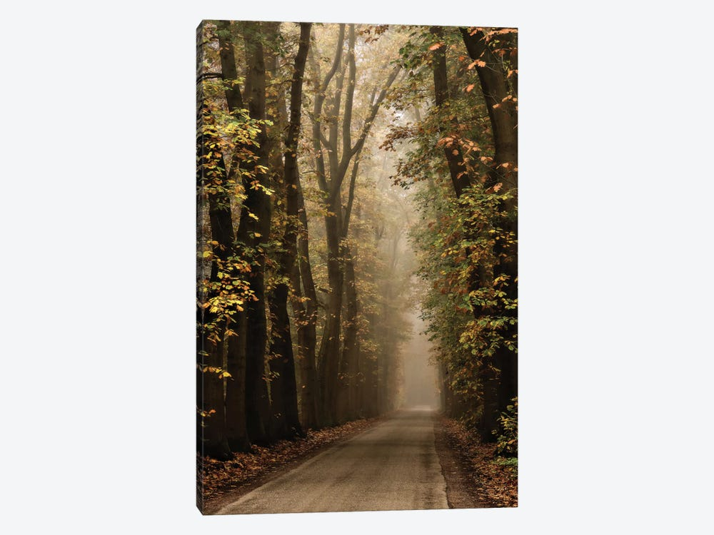 Folia by Lars van de Goor 1-piece Canvas Wall Art