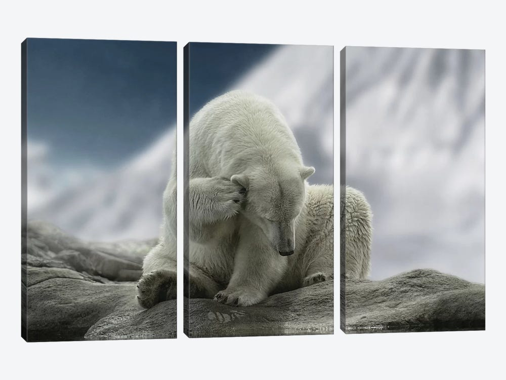 Itching Ear by Lars van de Goor 3-piece Canvas Print