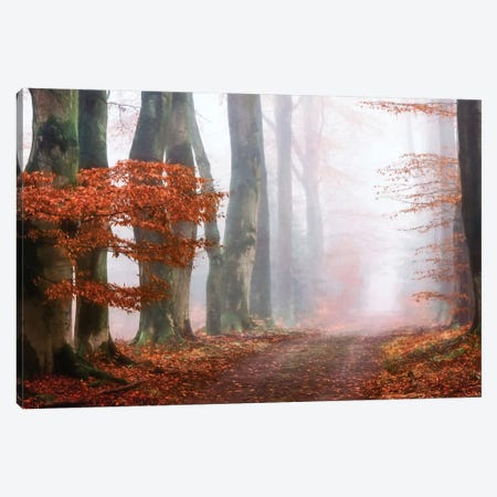Last Guide Before The Mist Canvas Print #LGR19} by Lars van de Goor Canvas Art