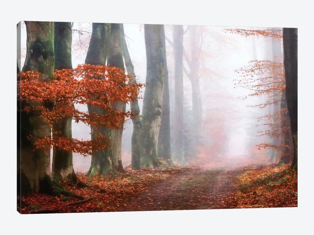 Last Guide Before The Mist by Lars van de Goor 1-piece Canvas Art