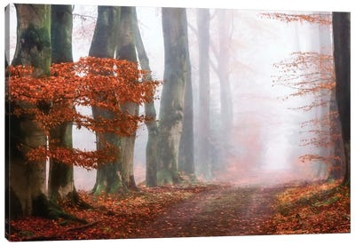 Last Guide Before The Mist Canvas Art Print