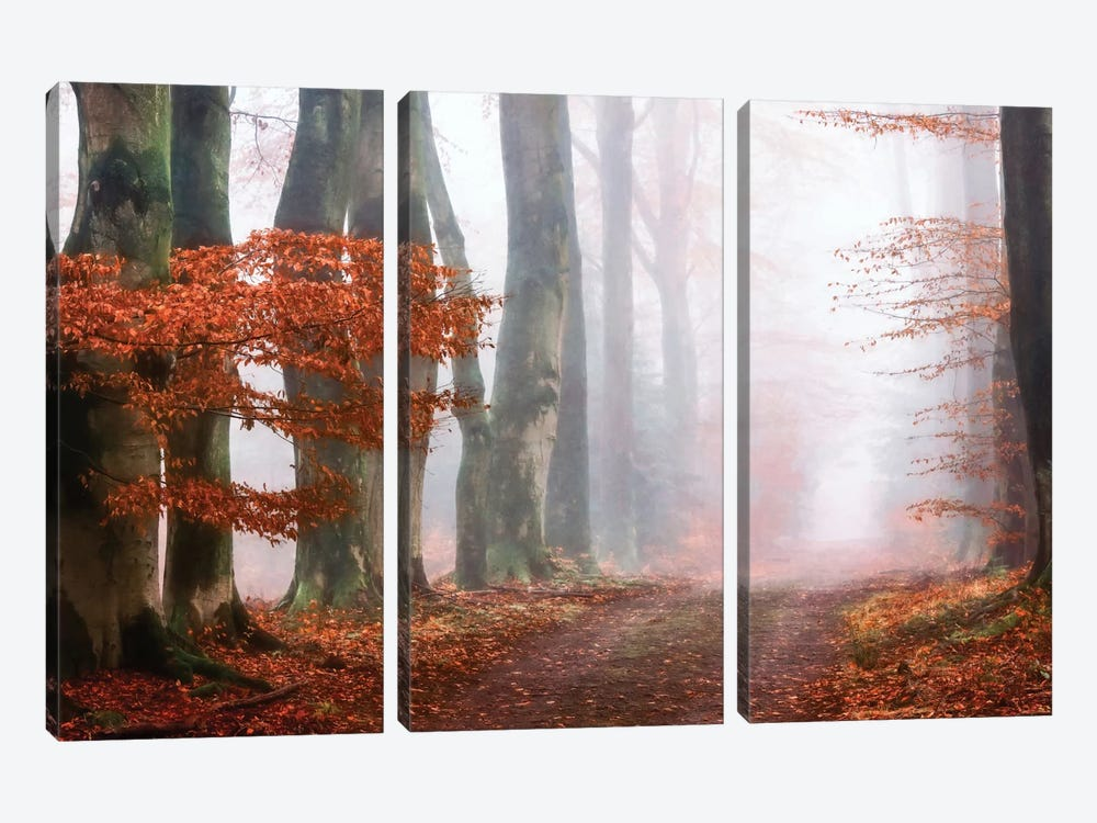 Last Guide Before The Mist 3-piece Canvas Artwork