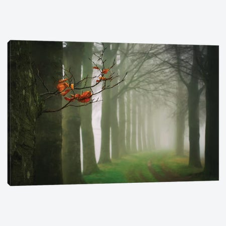 Old & New Canvas Print #LGR20} by Lars van de Goor Canvas Print