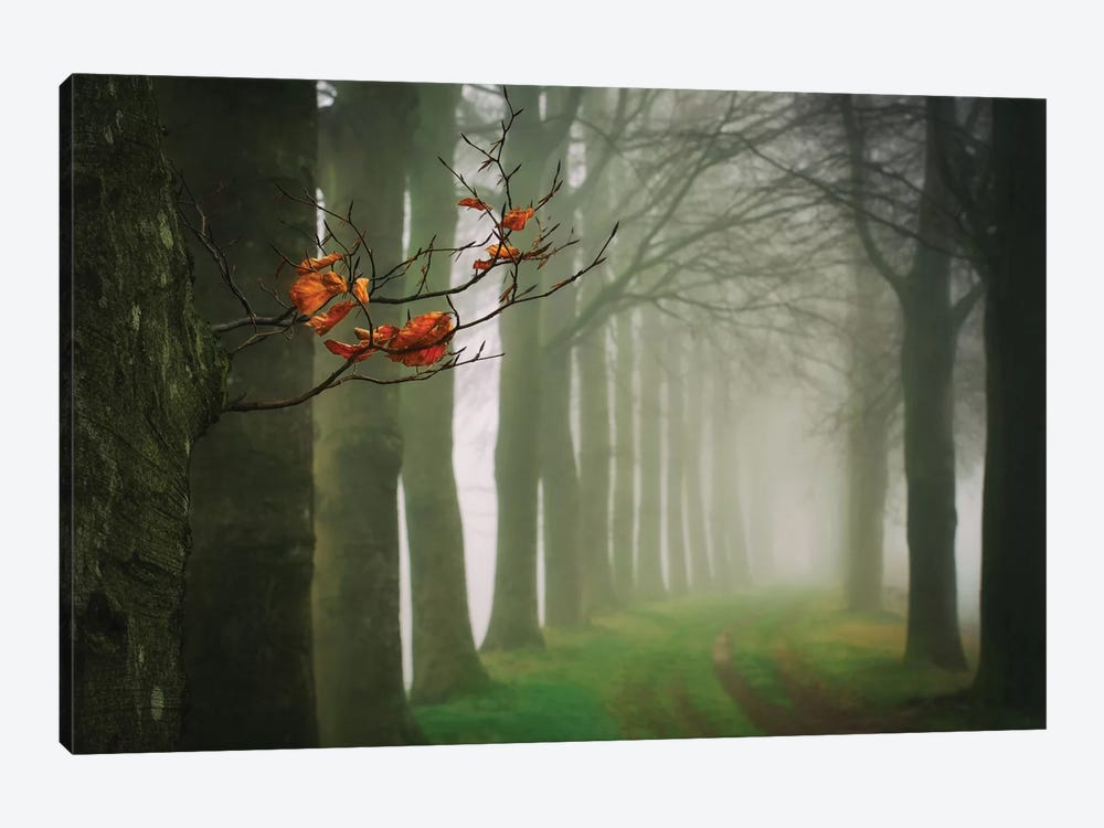 Old & New by Lars van de Goor 1-piece Canvas Art