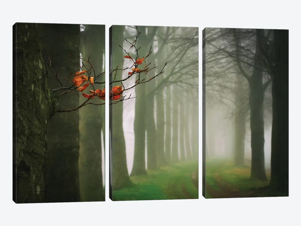 Old & New by Lars van de Goor 3-piece Canvas Wall Art