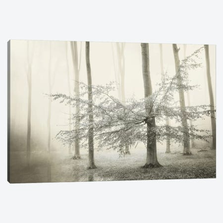 Only For Unicorns Canvas Print #LGR21} by Lars van de Goor Art Print
