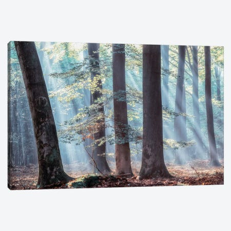 Spellbound Canvas Print #LGR24} by Lars van de Goor Canvas Artwork