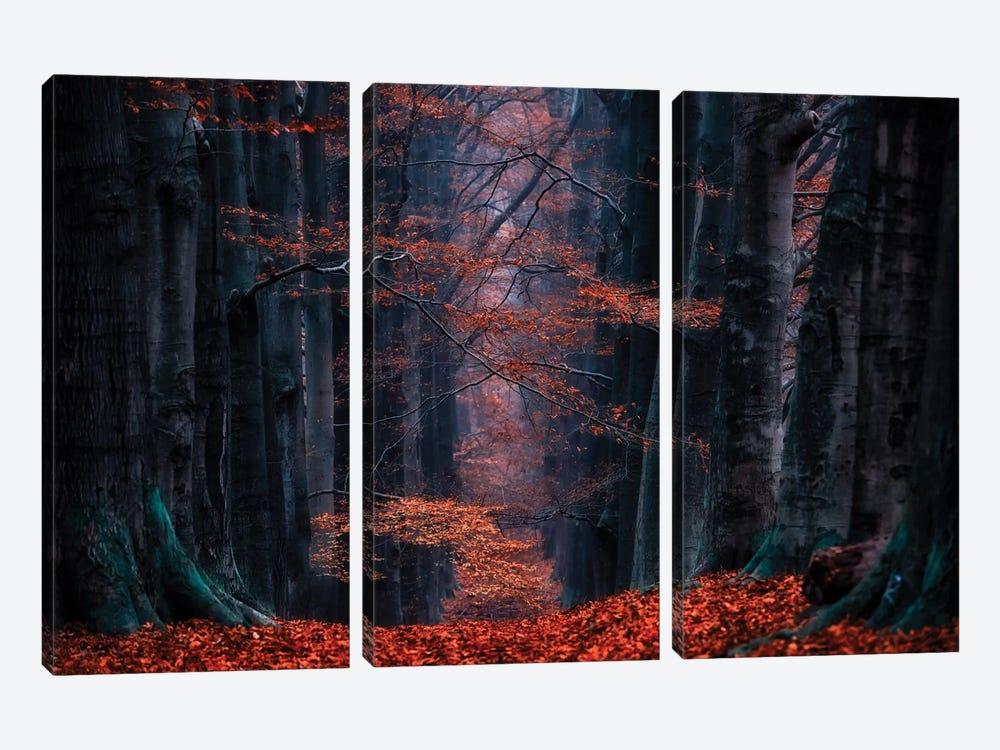 Synapse by Lars van de Goor 3-piece Art Print