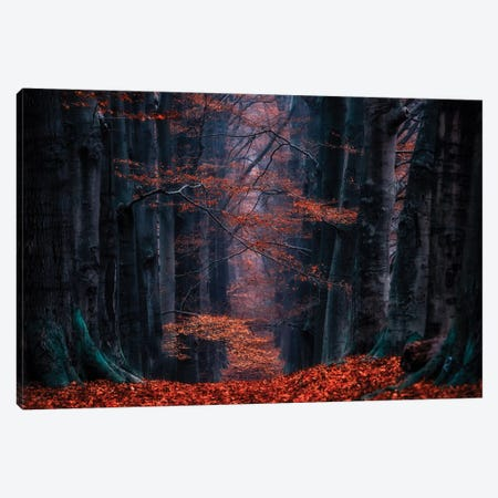 Synapse Canvas Print #LGR25} by Lars van de Goor Canvas Wall Art
