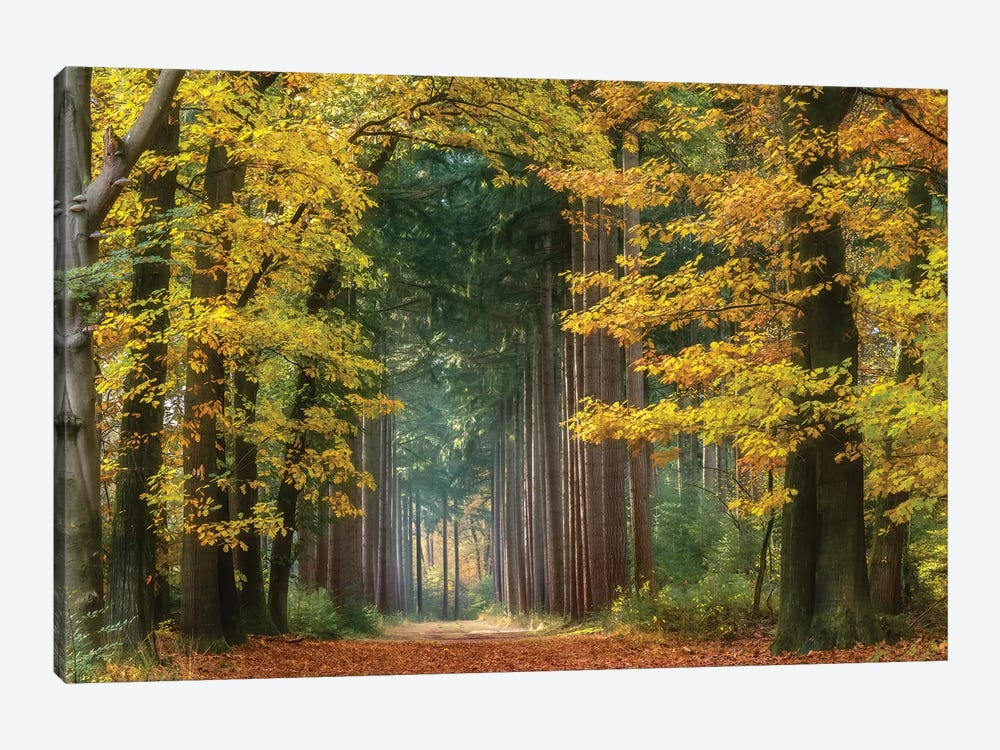 Yellow Gate by Lars van de Goor 1-piece Art Print