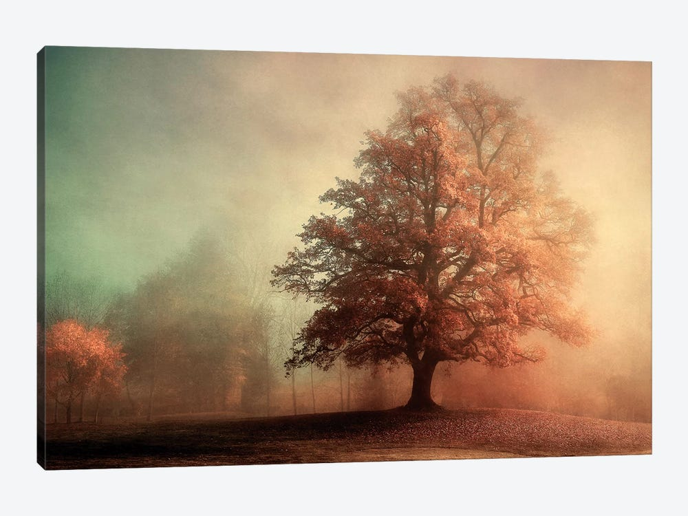 Standing Proud by Lars van de Goor 1-piece Canvas Art