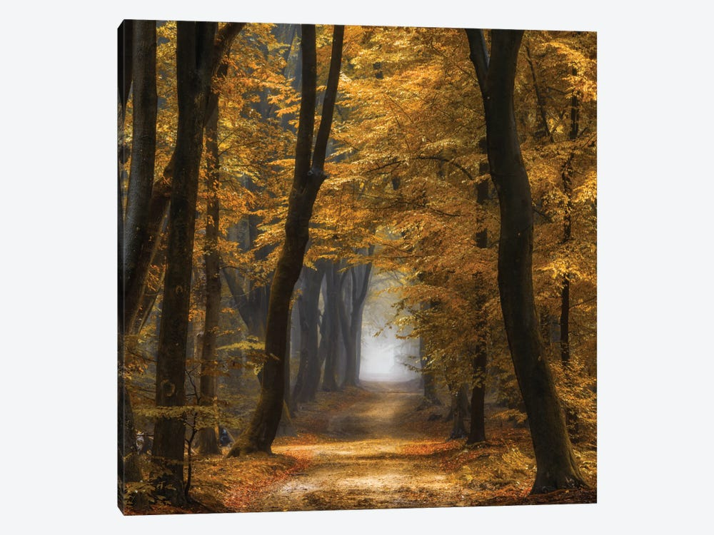 Speuldimensions 1-piece Canvas Print