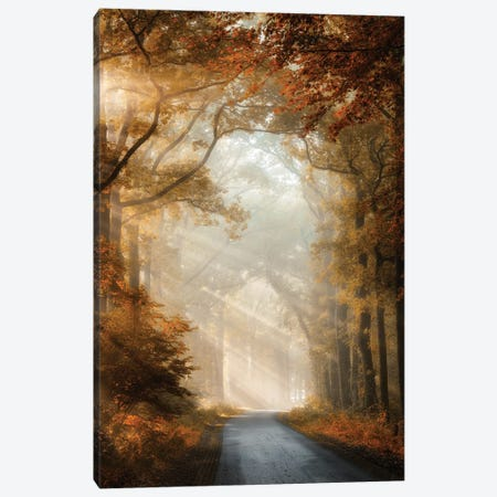 Bliss Is Canvas Print #LGR38} by Lars van de Goor Canvas Artwork