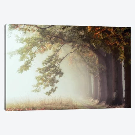 Dawnscratchers Canvas Print #LGR39} by Lars van de Goor Canvas Wall Art