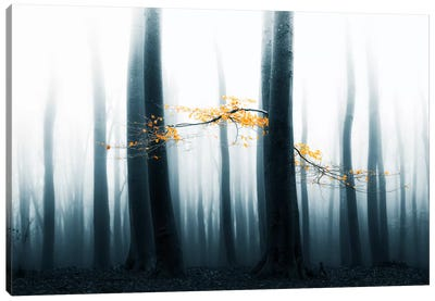 Speulder Revisited II Canvas Art Print