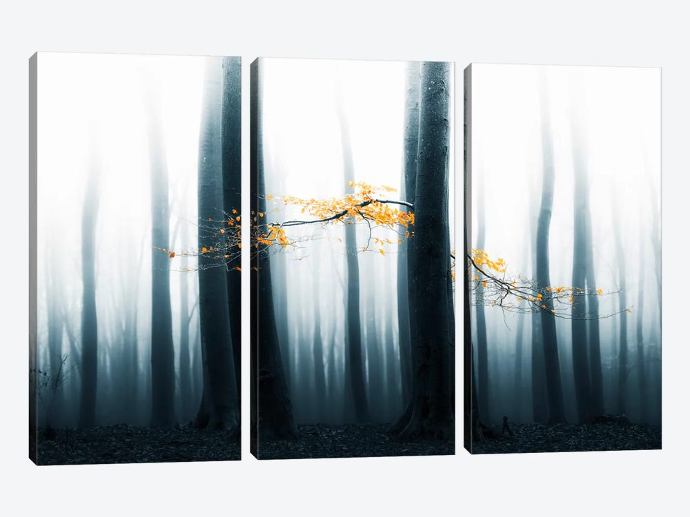 Speulder Revisited II by Lars van de Goor 3-piece Canvas Art