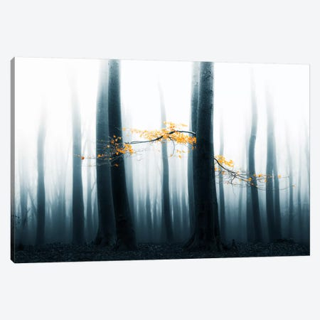 Speulder Revisited II Canvas Print #LGR3} by Lars van de Goor Canvas Art Print
