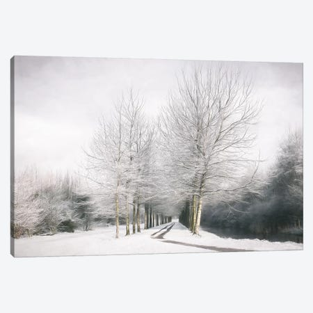 Winter Is Here Canvas Print #LGR41} by Lars van de Goor Art Print