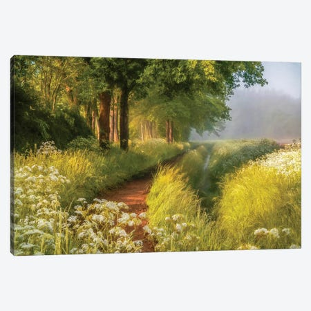 Spring In Holland Canvas Print #LGR43} by Lars van de Goor Canvas Art Print
