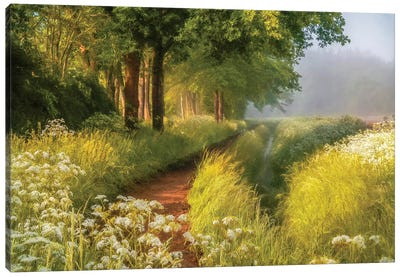 Spring In Holland Canvas Art Print
