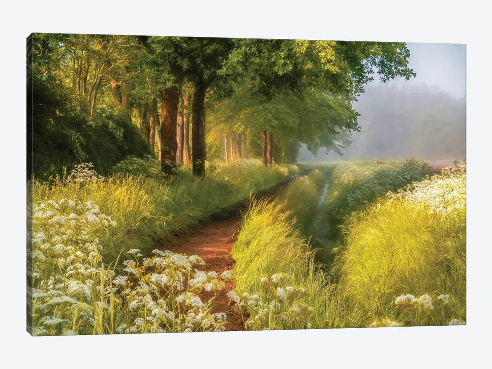 Spring In Holland 1-piece Canvas Print