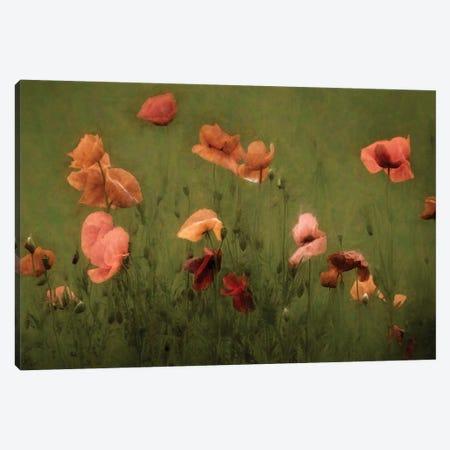 The Wild Bunch Canvas Print #LGR44} by Lars van de Goor Canvas Art