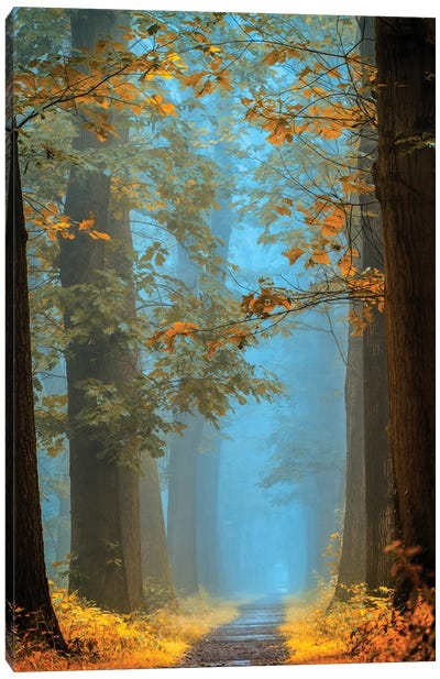 Orange Blue Avenue Canvas Art Print