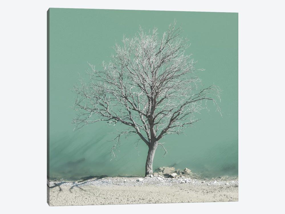 Wet Feet by Lars van de Goor 1-piece Canvas Print