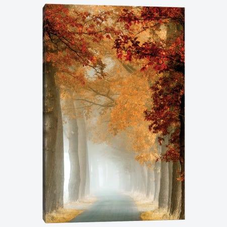 Wonder Curve Canvas Print #LGR48} by Lars van de Goor Art Print