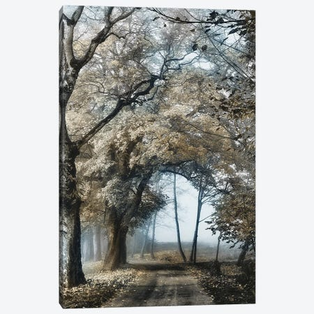 Road to Tomorrow Canvas Print #LGR50} by Lars van de Goor Canvas Artwork